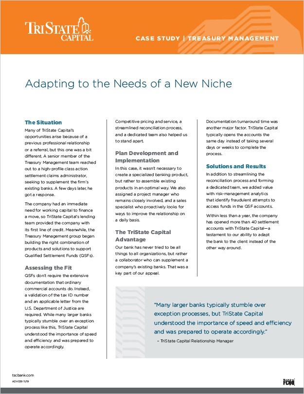Treasury Management Case Study: New Niche
